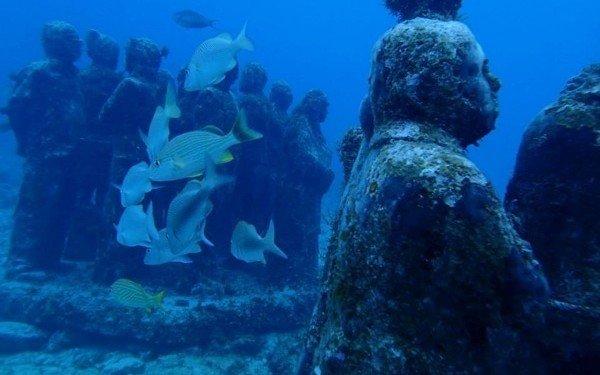 Feli unplugged: Meine 10 verrücktesten Abenteuer rund um die Welt!