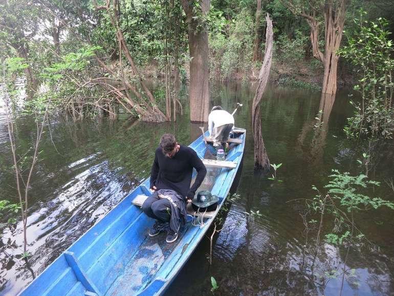Amazonas Brasilien29