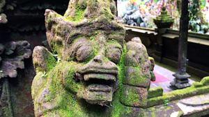 Der Batukaru Waldtempel , Bali