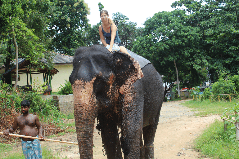 Barbara_auf_einem_Elefanten_in_Kandy