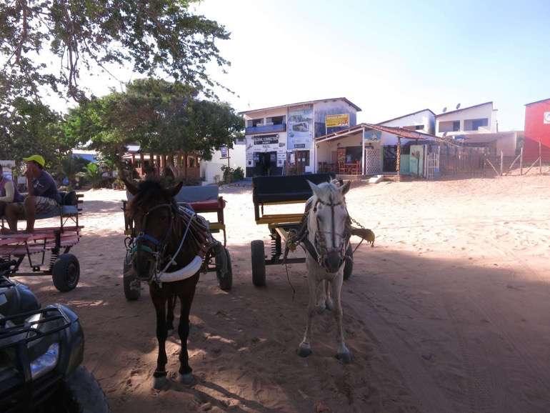 Brasilien Jeri 2014 0081