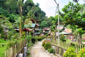 Bukit_Lawang_Indonesien