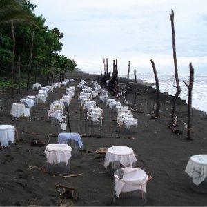 Costa Rica - schildkröten camp