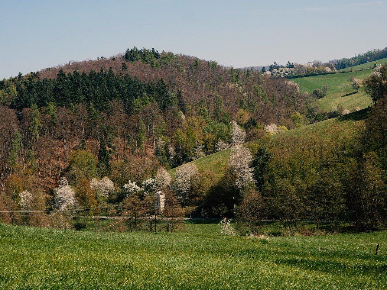 Der Odenwald