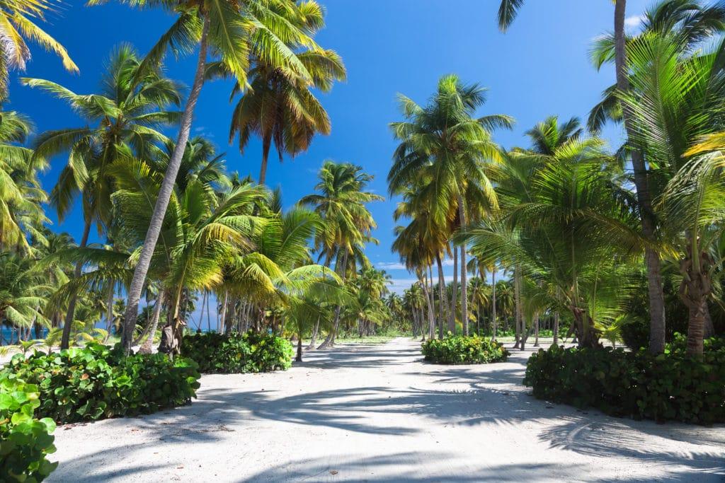 Die Dominikanische Republik – die Insel für Romantiker