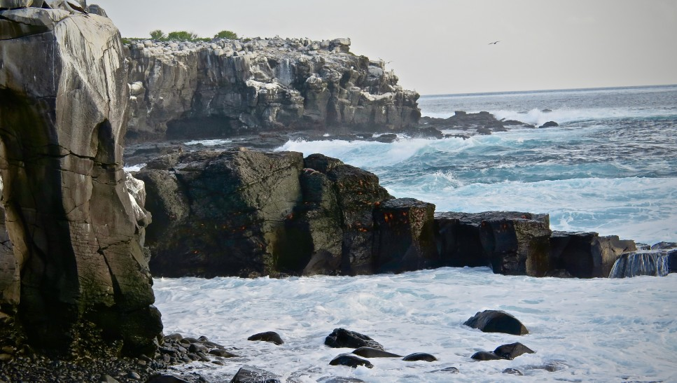 Die Galapagos Inseln, Backpacking