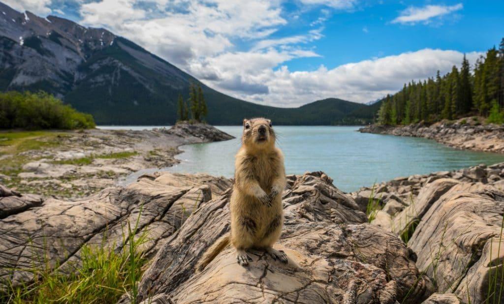 Beste Reisezeit für Backpackers in Kanada
