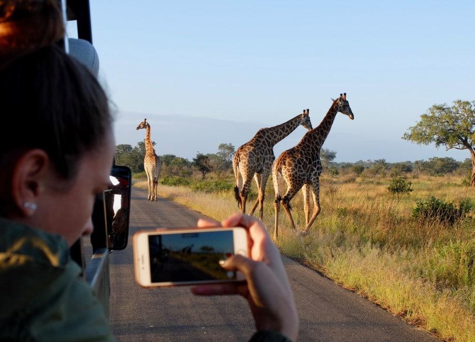 Backpacking in Kruger Nationalpark, Südafrika