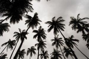 Monrovia_Liberia