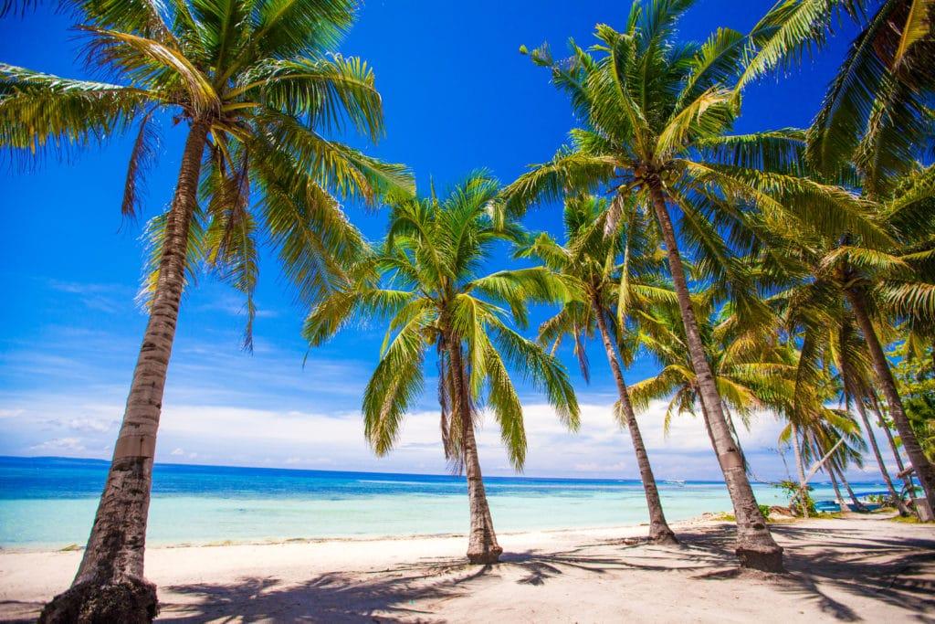 Philippinen_unzählige Inseln und unentdeckte Traumstrände