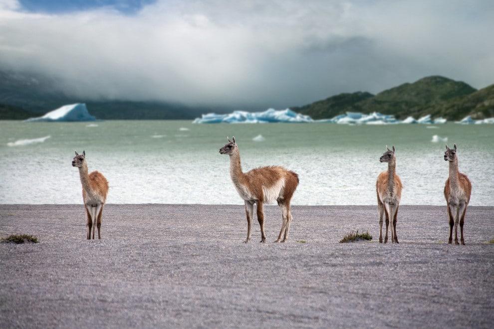 Beste Resiezeit in Chile