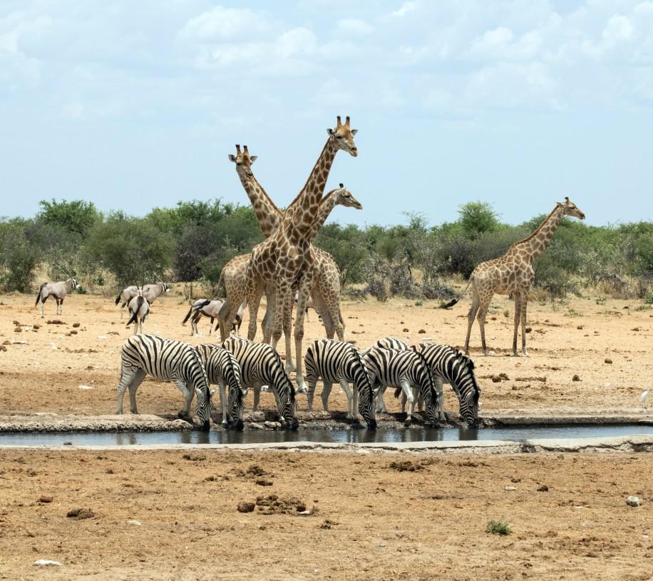 Beste Reisezeit für Backpackers in Namibia