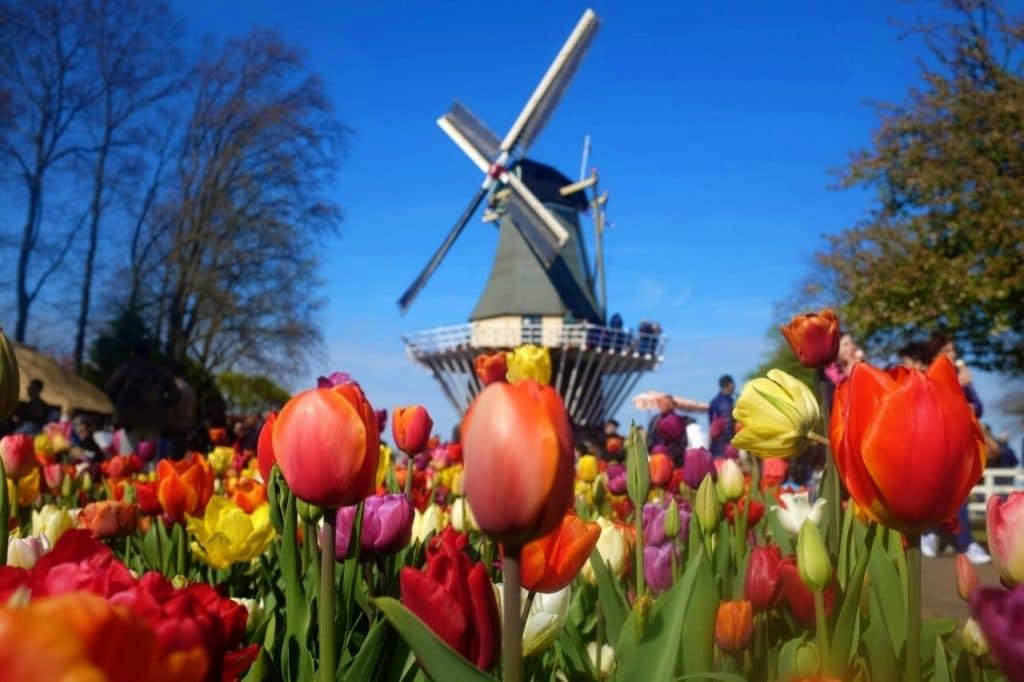 Beste Reisezeit Niederlande