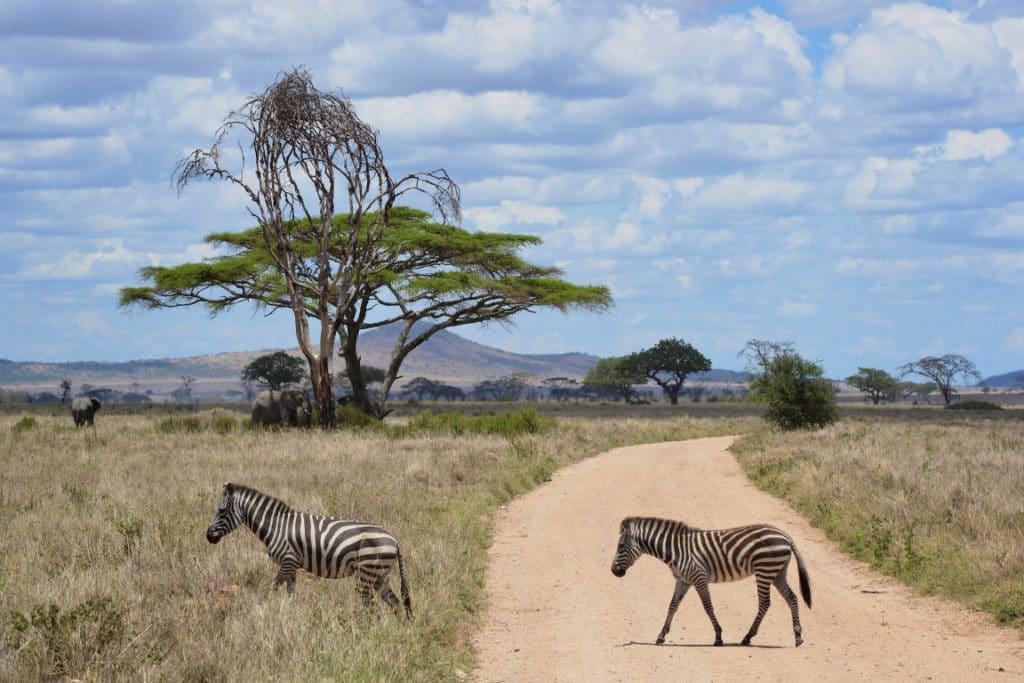 Beste Reisezeit in Tansania