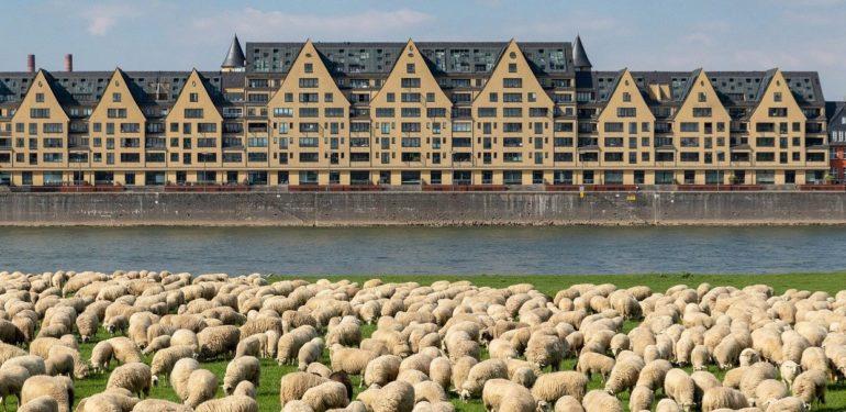 15 Schöne Städte in NRW: Vielfältig und bezaubernd