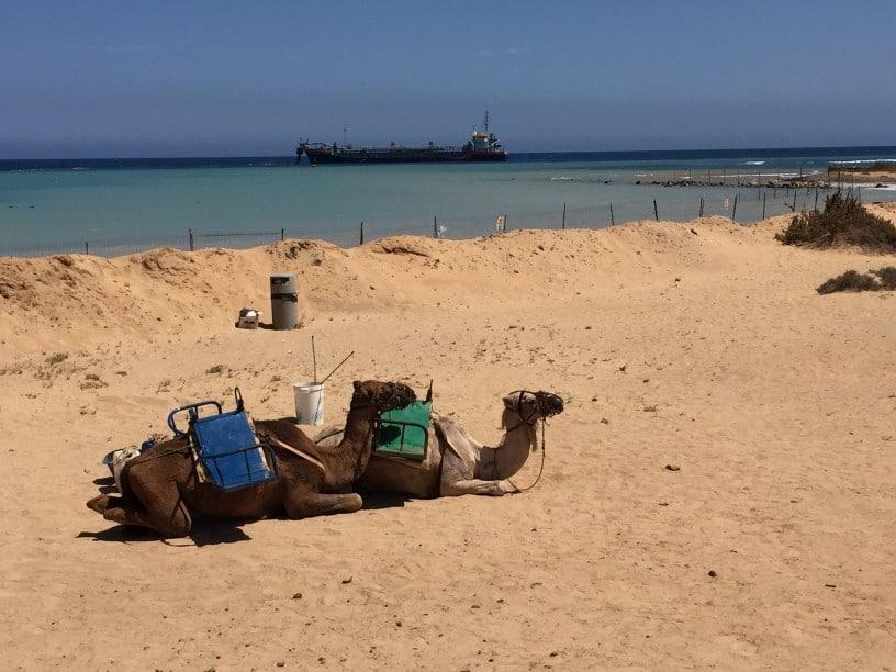 Sicherheit in Fuerteventura für Backpackers