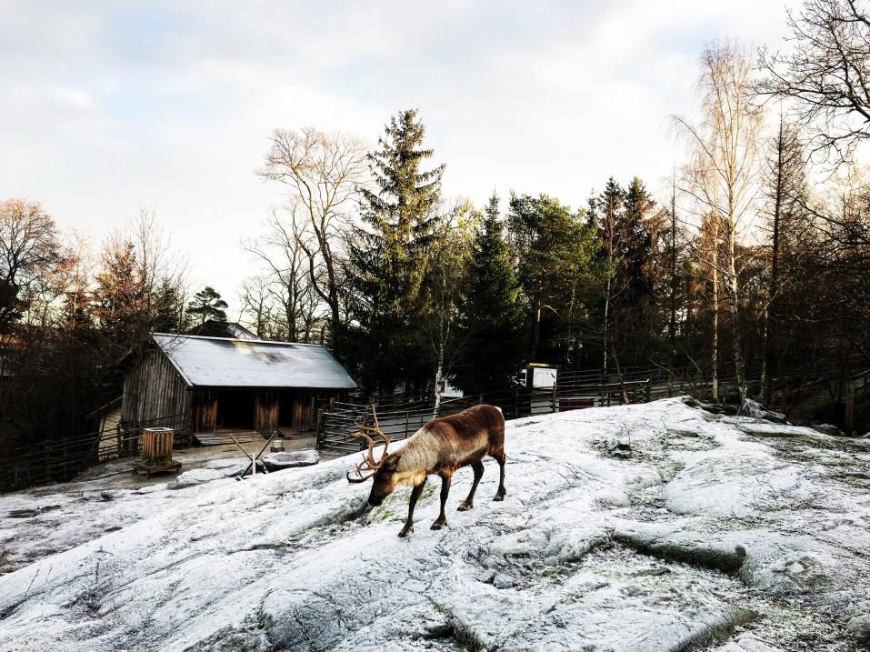 Skansen, Schweden