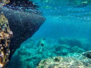 Filmen_unterwasserkamera