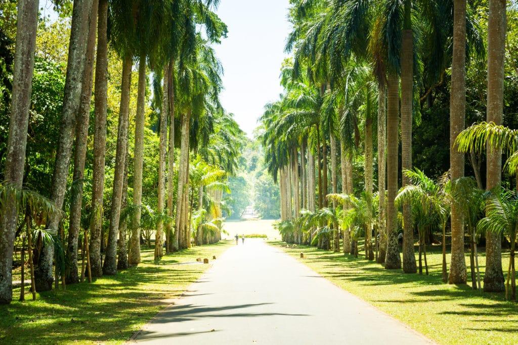 Sri_Lanka_Nationalpark