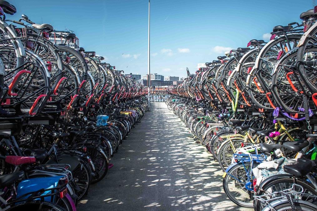 Radfahen, Transport in den Niederlanden