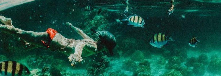 Die 10 besten Unterwasserkameras für Backpacker & Reisende