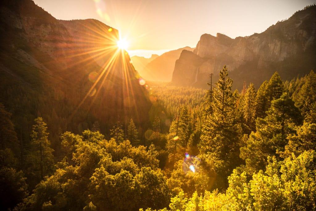 Unvergessliche Zeit im Yosemite-Nationalpark