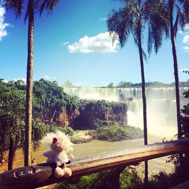 Zumbina Angelina Hieronyma in Iguazú