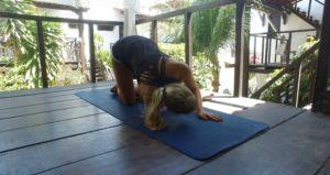 feli-yoga
