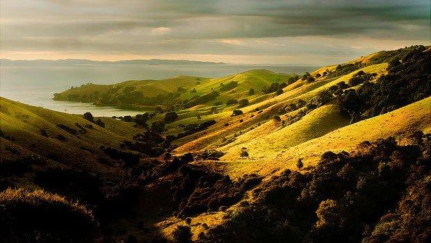 Amoklauf Neuseeland Hd: Neuseeland Backpacker
