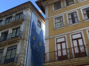 die alten Gebäude in Porto